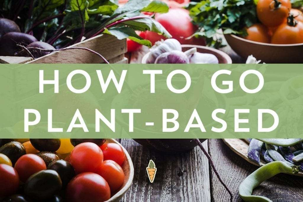 How to go plant beased meal