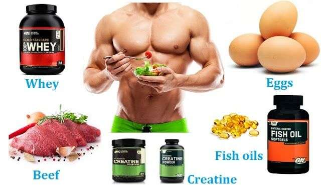 The Most Important Foods for Muscle Building